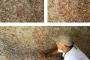 Maden tehdidindeki Latmos'ta yeni kaya resimleri bulundu