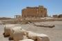 Yaralı Palmira'yı dönüştürmekle başlanmalı