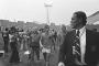 1974 Almanya: Başrolde Hollanda ve Total Futbol