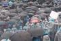 AYM, grev yasaklayan Bakanlar Kurulu'nun tazminat ödemesine hükmetti