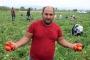 Torbalı'da tarım işçilerinin birliği ve iş bırakma, kısmi zam getirdi