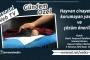 Kalafatoğlu: İki yılın altında verilecek cezalar yetersiz
