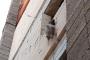 Denizli'de yavru köpek inşaatta iple asılı halde bulundu