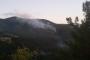 Hatay'da orman yangını: 9 hektarlık alan zarar gördü