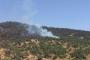 Tunceli Valiliği: Yangın kontrol altında, haberler gerçeği yansıtmıyor