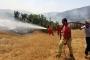 Bingöl'deki yangın 5 günün ardından kontrol altına alındı