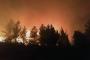 Kırkağaç'ta orman yangını: 45 dekarlık alan zarar gördü
