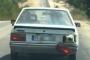 Koyuna işkence: Kurbanlık koyunu arabanın bagajında taşıdı