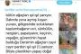 Ferhat Tunç'tan 'Ağaçlarımız ışıl ışıl' diyen Tunceli Valisi'ne tepki
