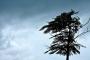Marmara için kuvvetli rüzgar uyarısı yapıldı