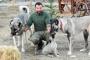 İtalya'da kurt saldırılarına çözüm önerisi: Sivas Kangalı alın