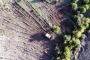 Zeytinliklere komşu ormana taş ocağı ve beton santrali