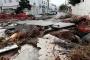 Bodrum'da sel: Sokaklar savaş alanına döndü, evleri su bastı