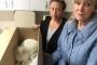 İşkence edilmiş halde bulunan kedi tedavi altına alındı