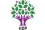 HDP: Dersim'de 2 çocuğun ölümüne neden olan patlamanın sorumlularını kınıyoruz