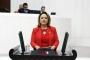 CHP Adana Milletvekili Şevkin: Kriz yüzünden milyonlarca kişi icralık