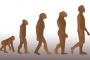 Evrim: Teori mi Yasa mı?
