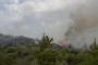Milas'ta da ormanlık alanda yangın çıktı