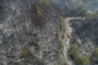 Muğla'da orman yangını   MUÇEP Sözcüsü: Milyonlarca canımız gitti