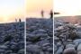 Çıralı sahilindeki yuvalarından çıkan yavru Caretta caretta'lar denizle buluştu