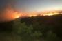 Elazığ Karakoçan'da ormanlık alanda yangın çıktı