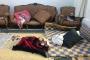 Mardin, Şırnak ve İzmir'de HDP'lilere ev baskını: 21 gözaltı