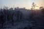 Orman yangınlarının önlenmesine dair önerge AKP ve MHP oylarıyla reddedildi