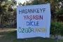 Hasankeyf'in sulara gömülmesine karşı etkinlik: Her yerde Hasankeyf diyeceğiz