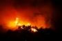 Bursa Gürsu'da ormanlık alanda yangın çıktı, yangın söndürüldü