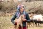 Kadını taşla yaralamaya verilen para cezası 20 taksite bölündü