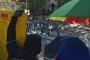 Hong Kong'da üniversitelere sıçrayan gösteriler sürüyor
