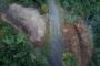 Adalar Kaymakamlığı: Ruam hastalığı tespit edilen 81 at itlaf edildi