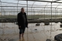 Adana'da selden zarar gören çiftçiler: Simit sarayını değil bizi kurtarın