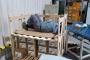 Akwel işçileri, işten atmaya karşı iş bırakma eylemini sürdürdü