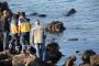 Ereğli'de denizde kadın cesedi bulundu