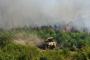 Antalya yangını 'insan değil devlet kaynaklı'