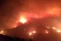 Buca'da ormanlık alandaki yangın hızla yayılıyor