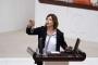 Beştaş: HDP'ye oy vermeyenler de hukuksuzluğa karşı çıkmalı