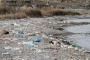 Van Gölü günden güne kirleniyor