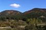 Amanos Dağları eteklerinde çatışma: 1 hayatını kaybetti