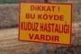 Elazığ'da kuduz alarmı