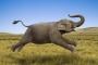 Fillerin önünde  neden işememelisiniz?
