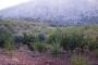 Spil Dağı Milli Parkı'na taş ocağı iptal edildi
