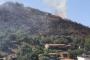 Tire'de tarım arazisindeki yangın ormanı da yaktı