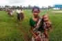 Arakanlı Müslümanlar Bangladeş sınırına yığıldı