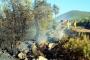 Bodrum'da orman yangını: 1 hektar ormanlık alan küle döndü