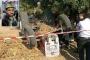 Soma'da maden işçisi ve oğlu tarlada çalışırken öldü