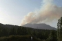 Nallıhan'da orman yangını