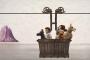 Wes Anderson 'Köpekler adası'yla geliyor: Fragmanı çıktı