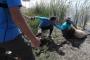 Muş'ta bisikletçiler, çamura saplanan koyunu kurtardı
